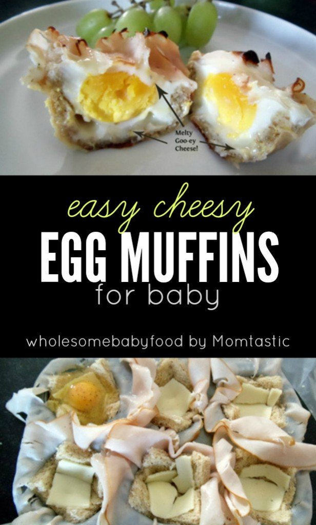 Here's a super yummy, and super easy muffin tin recipe for baby! Parents will love it too!